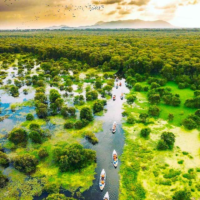 Không chỉ có miệt vườn sông nước mênh mang, miền Tây Nam Bộ còn có những rừng tràm xanh mướt hút hồn du khách: Địa điểm đổi gió tuyệt vời dịp 30/4 - 1/5 tới! - Ảnh 2.