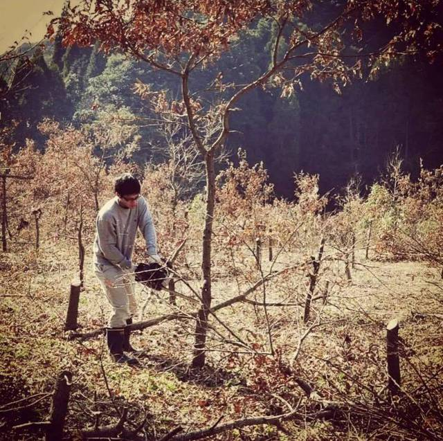 Từ thành phố chuyển về nông thôn ở nhà gỗ, gia đình Nhật Bản biến cuộc sống bình thường trở thành thiên đường! - Ảnh 5.