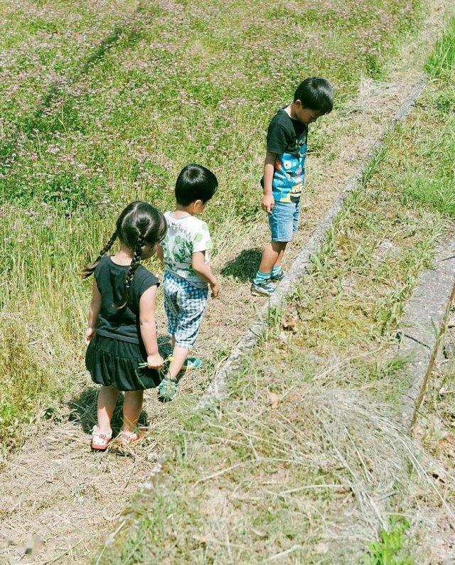 Từ thành phố chuyển về nông thôn ở nhà gỗ, gia đình Nhật Bản biến cuộc sống bình thường trở thành thiên đường!  - Ảnh 13.