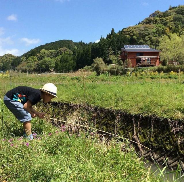 Từ thành phố chuyển về nông thôn ở nhà gỗ, gia đình Nhật Bản biến cuộc sống bình thường trở thành thiên đường!  - Ảnh 18.