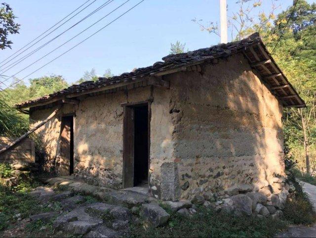 Cô gái 40 tuổi không kết hôn, chuyển nhà vào núi ở: Tiêu hết tiền tiết kiệm để sống nhà đất, sửa chuồng lợn thành phòng làm việc - Ảnh 3.