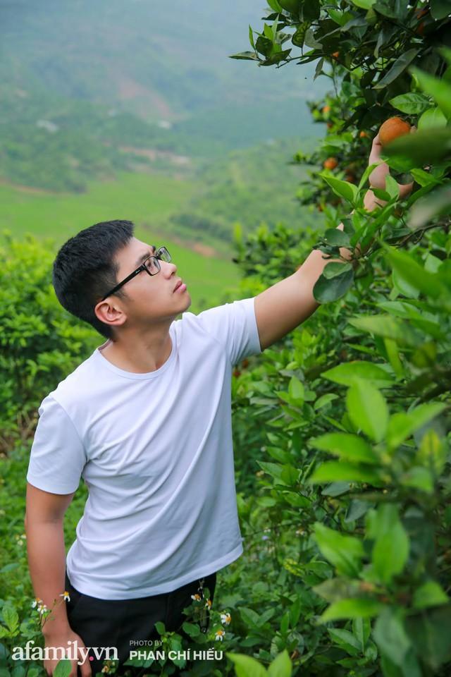Chàng công tử đất Hà thành bỏ phố lên núi làm chủ 3 quả đồi trồng cam, mỗi năm kiếm cả tỷ bỏ túi nhưng cũng bị vùi dập đến tơi bời  - Ảnh 11.