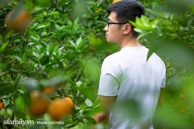 Chàng công tử đất Hà thành bỏ phố lên núi làm chủ 3 quả đồi trồng cam, mỗi năm kiếm cả tỷ bỏ túi nhưng cũng bị vùi dập đến tơi bời  - Ảnh 10.
