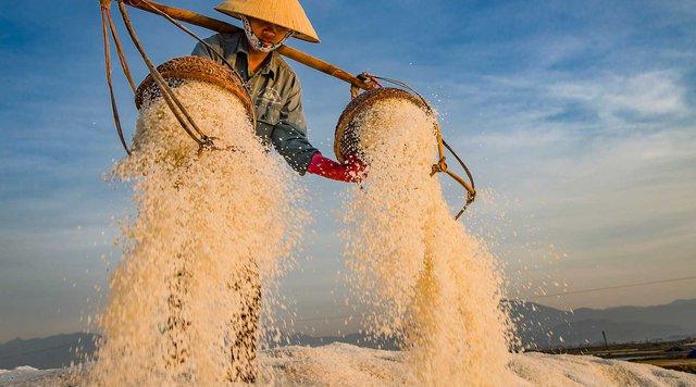 Hè mới lạ của giới trẻ: Trải nghiệm hương mặn mà với 4 cánh đồng muối cực đẹp ở miền Trung - Ảnh 3.