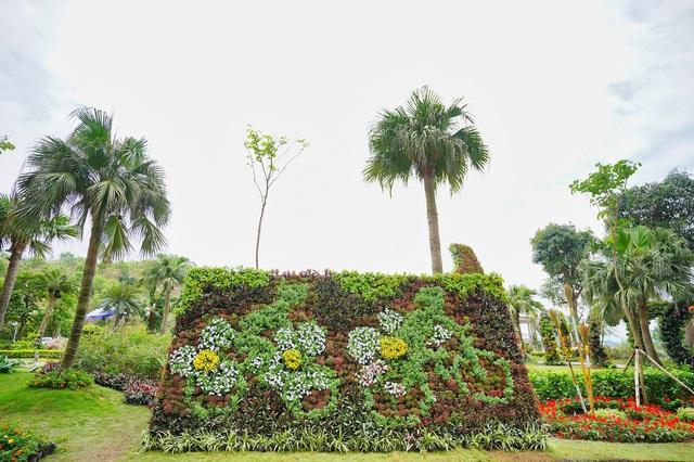 Ngàn hoa khoe sắc trên đồi cao tại Hạ Long: khung cảnh độc đáo thu hút du khách dịp 30/4 - Ảnh 7.