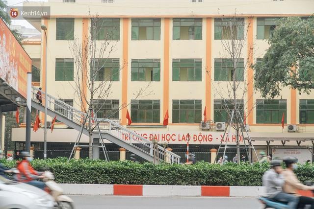 Hàng phong lá đỏ ở Hà Nội: Từ kỳ vọng Châu Âu giữa lòng Thủ đô đến những cành củi khô sắp bị thay thế - Ảnh 10.