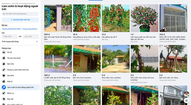 Sếp Facebook: Khu vực ngoại thành và nông thôn là lời giải bài toán tăng trưởng cho doanh nghiệp và tương lai của ngành TMĐT Việt Nam - Ảnh 1.
