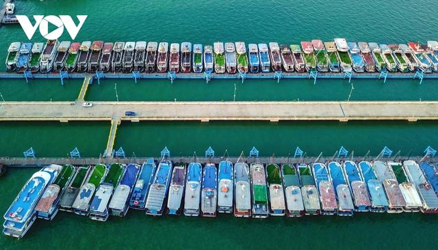 Du lịch đóng băng, du thuyền tiền tỷ nằm chật bến tại Quảng Ninh - Ảnh 2.