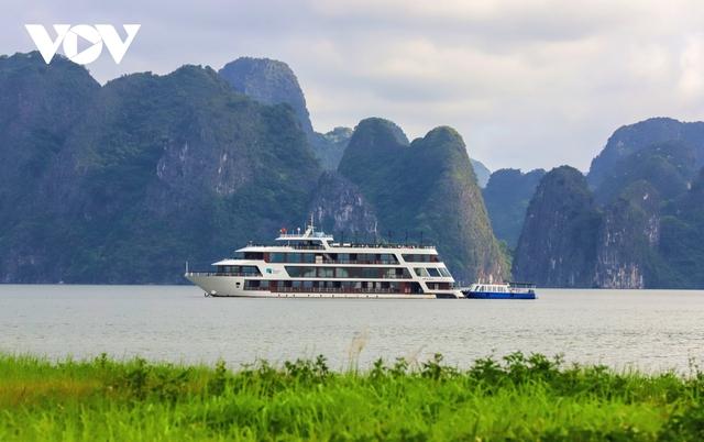 Du lịch đóng băng, du thuyền tiền tỷ nằm chật bến tại Quảng Ninh - Ảnh 11.
