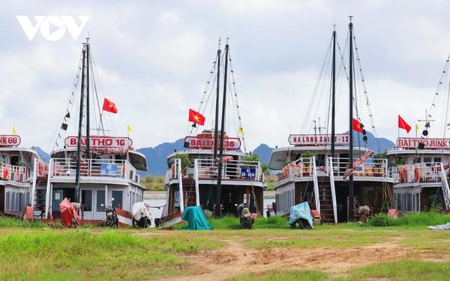 Du lịch đóng băng, du thuyền tiền tỷ nằm chật bến tại Quảng Ninh - Ảnh 12.