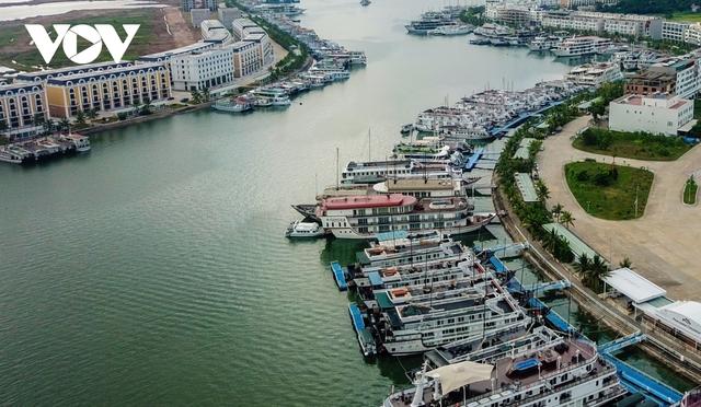 Du lịch đóng băng, du thuyền tiền tỷ nằm chật bến tại Quảng Ninh - Ảnh 13.