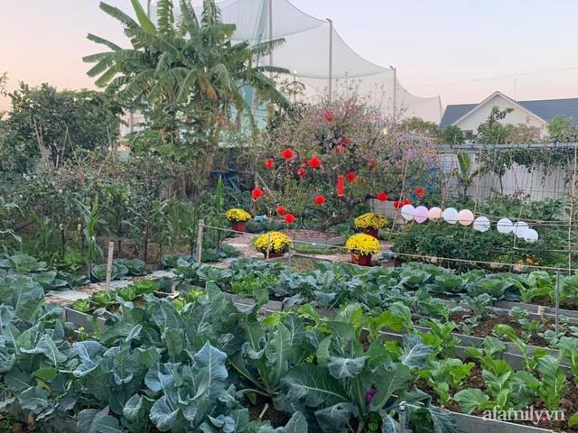 Nông trại rộng 300m² đẹp như cổ tích với đủ loại hoa và rau quả của mẹ 4 con ở Móng Cái, Quảng Ninh - Ảnh 3.
