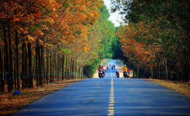 7 cung đường bộ đẹp nhất Việt Nam xuất hiện trên Tạp chí du lịch danh tiếng thế giới: Ngắm cảnh còn ngỡ lạc vào động tiên - Ảnh 8.