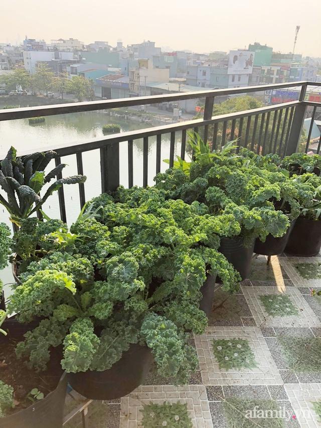 Sân thượng 100m² xanh tươi rau quả sạch của mẹ đảm ở Đà Nẵng - Ảnh 22.