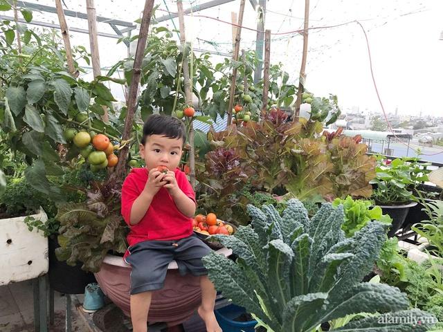 Sân thượng 100m² xanh tươi rau quả sạch của mẹ đảm ở Đà Nẵng - Ảnh 27.
