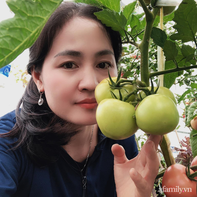 Sân thượng 100m² xanh tươi rau quả sạch của mẹ đảm ở Đà Nẵng - Ảnh 4.