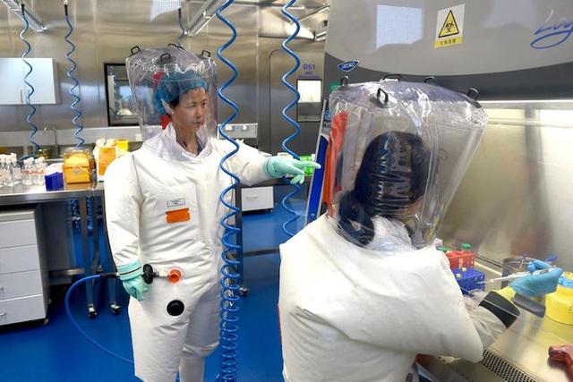Tóm tắt tất cả bằng chứng hiện có về nguồn gốc COVID-19: Virus đã rò rỉ từ phòng thí nghiệm hay tiến hóa từ tự nhiên? - Ảnh 4.