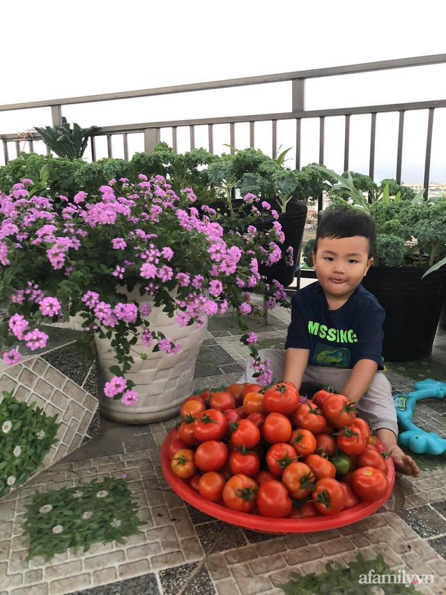 Sân thượng 100m² xanh tươi rau quả sạch của mẹ đảm ở Đà Nẵng - Ảnh 7.