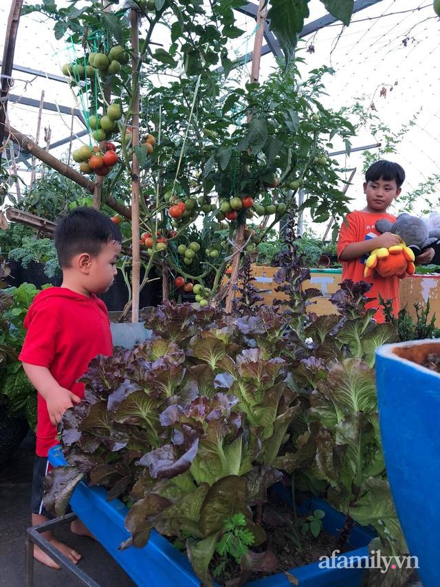 Sân thượng 100m² xanh tươi rau quả sạch của mẹ đảm ở Đà Nẵng - Ảnh 8.