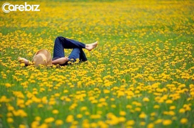 Dừng lại - Lắng nghe - Buông bỏ - Hành động: 4 điều giúp cuộc đời sớm nở hoa - Ảnh 2.