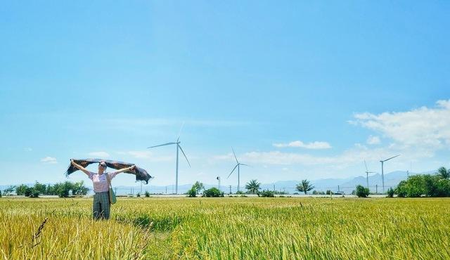 (mai) [Ảnh] 3 cánh đồng quạt gió được du khách check-in nhiều nhất  - Ảnh 5.