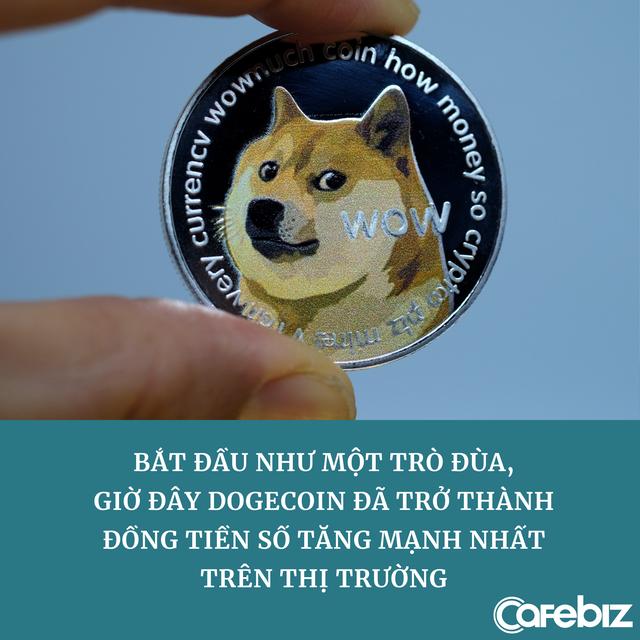 Mua Dogecoin năm 2019, nay có trong tay 36,7 tỷ coin trị giá gần 23 tỷ USD - Ảnh 1.