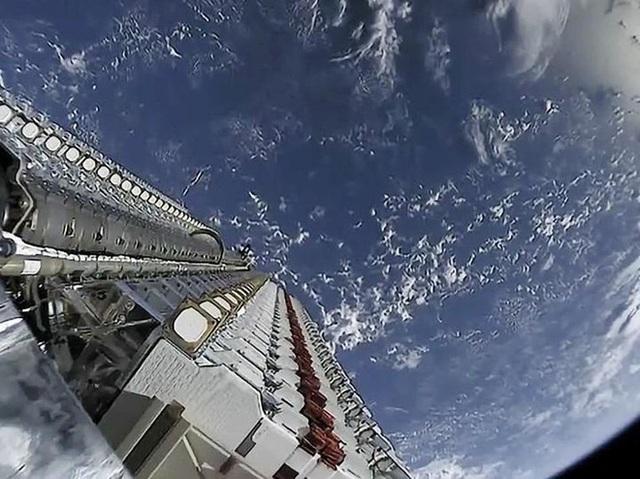 Dịch vụ Internet vệ tinh Starlink hiện đại của Elon Musk gặp đối thủ lớn: những cái cây - Ảnh 1.