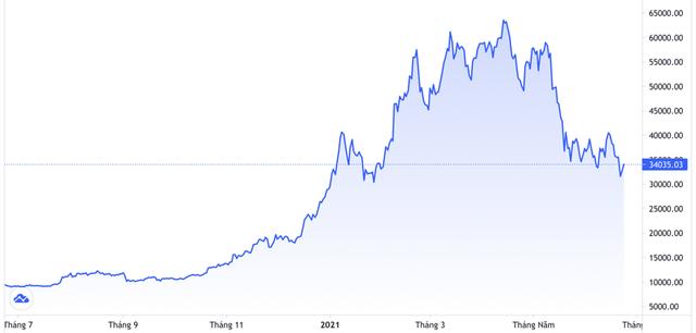 """Bitcoin bị ví như """"thuốc chuột"""", vẫn có dự báo lên 100.000 USD vào cuối năm - Ảnh 1."""