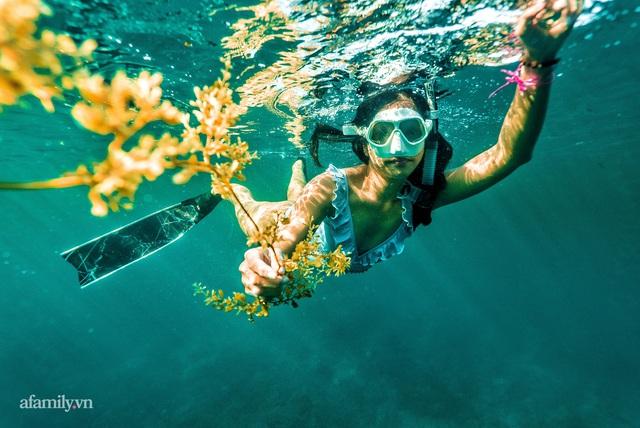 Zen Le - Cô gái Sài Gòn đam mê thể thao lặn biển đích thân trải nghiệm những tầng đại dương nguy hiểm mà không phải ai cũng được tới  - Ảnh 3.