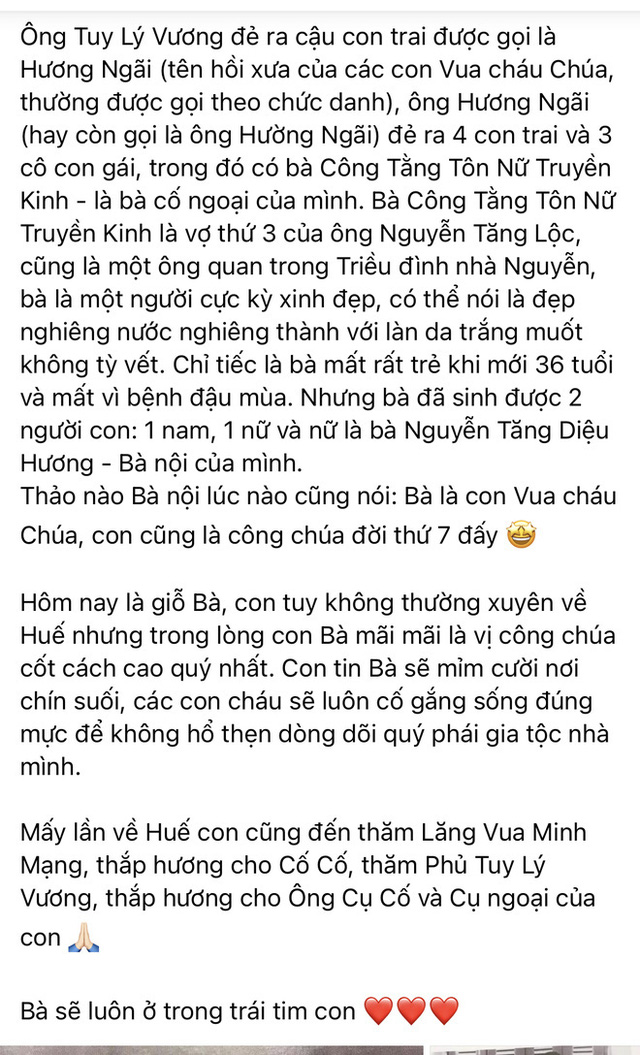 Hoa hậu Hà Kiều Anh đáp trả 1 tràng khi bị netizen thắc mắc về drama tự nhận là công chúa đời thứ 7 triều Nguyễn - Ảnh 6.