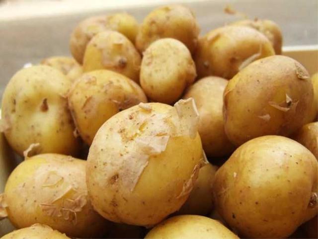 Cứ ngỡ rau củ ở Sài Gòn mùa dịch là đắt lắm rồi hoá ra những loại này còn đắt hơn nhiều, thậm chí lên đến cả trăm triệu đồng - Ảnh 4.