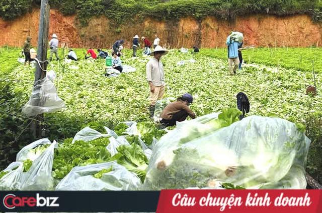 Nông dân tặng cả vườn rau, lương thực cứu nguy cho người Sài Gòn nhưng một doanh nghiệp lớn lại tăng giá hàng loạt: Một miếng bình ổn giá thời dịch hơn cả gói khuyến mãi thời bình! - Ảnh 3.