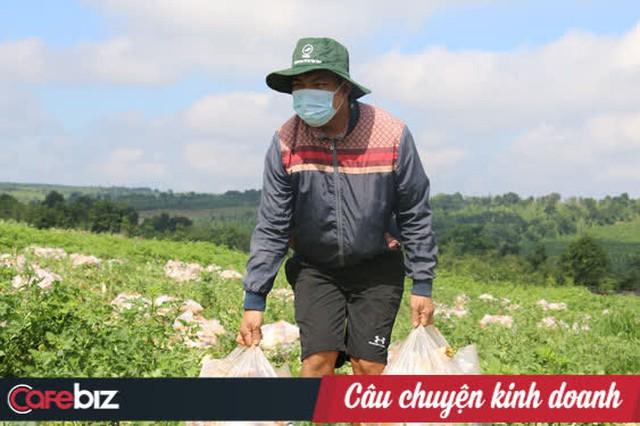 Nông dân tặng cả vườn rau, lương thực cứu nguy cho người Sài Gòn nhưng một doanh nghiệp lớn lại tăng giá hàng loạt: Một miếng bình ổn giá thời dịch hơn cả gói khuyến mãi thời bình! - Ảnh 4.