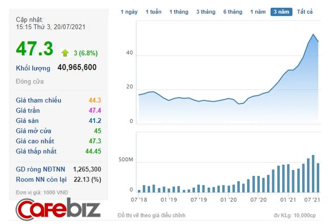 Tỷ phú Trần Đình Long dùng chiến lược kinh doanh nào để giúp cổ đông Hòa Phát X5 tài khoản chỉ sau hơn 1 năm? - Ảnh 1.
