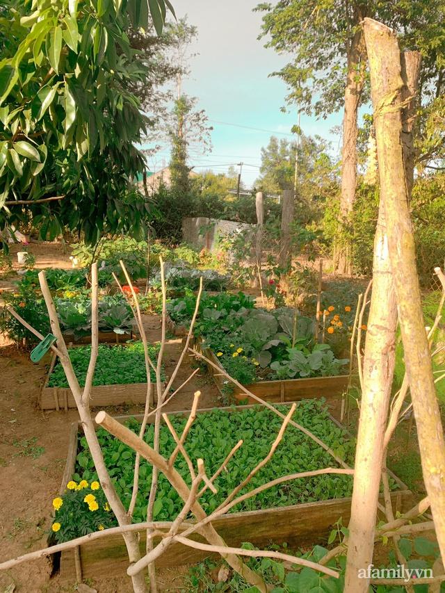Cuộc sống yên bình bên khu vườn 2000m² sau hai năm bỏ phố về quê của cặp vợ chồng 9X  - Ảnh 10.