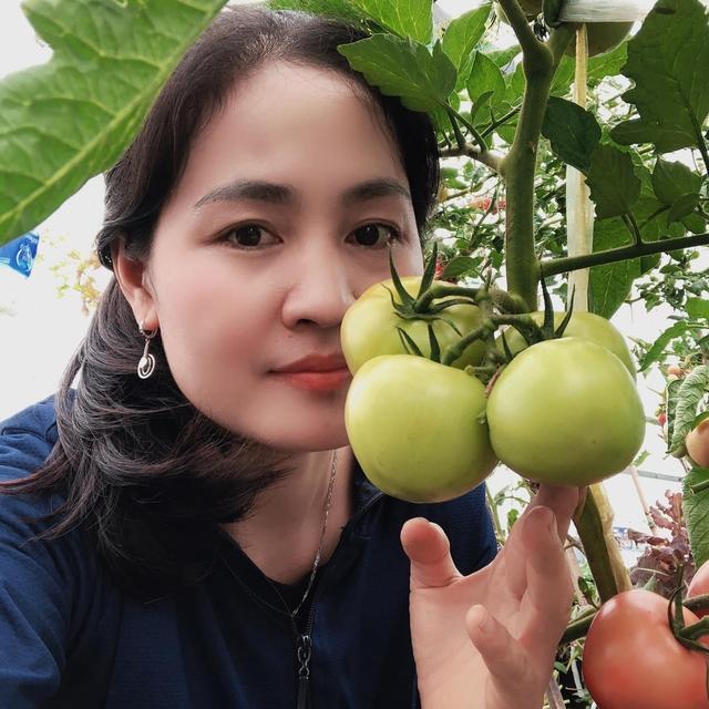 """Mẹ Đà Nẵng tạo ra """"nông trại"""" rau quả sạch trên tầng thượng giúp cả nhà vui khỏe trong những ngày giãn cách - Ảnh 1."""