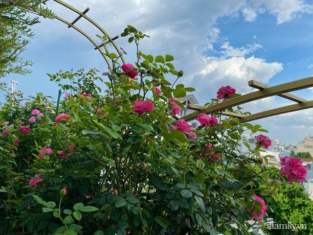 Sân thượng phủ kín hoa hồng và rau quả sạch ở Sài Gòn của Hoa hậu Janny Thủy Trần - Ảnh 14.