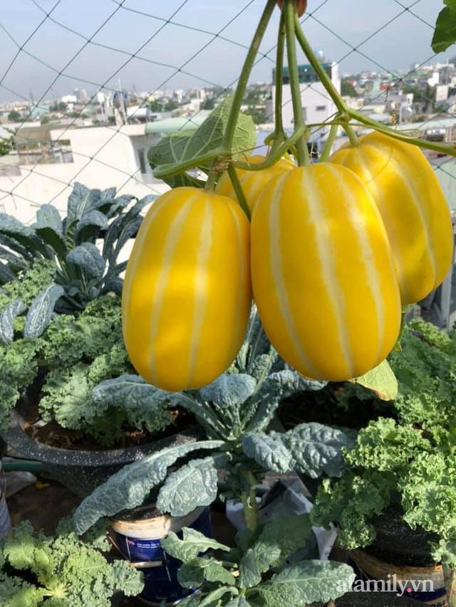"""Mẹ Đà Nẵng tạo ra """"nông trại"""" rau quả sạch trên tầng thượng giúp cả nhà vui khỏe trong những ngày giãn cách - Ảnh 19."""