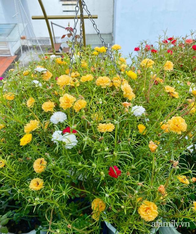 Sân thượng phủ kín hoa hồng và rau quả sạch ở Sài Gòn của Hoa hậu Janny Thủy Trần - Ảnh 21.