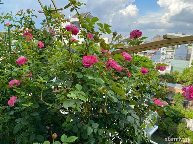 Sân thượng phủ kín hoa hồng và rau quả sạch ở Sài Gòn của Hoa hậu Janny Thủy Trần - Ảnh 5.