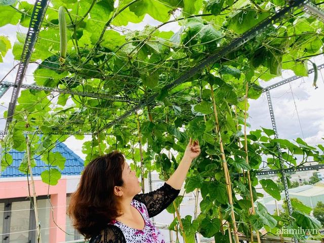 Khu vườn xanh tươi không khác gì nông trại trên sân thượng ở TP Thủ Đức, Sài Gòn - Ảnh 1.