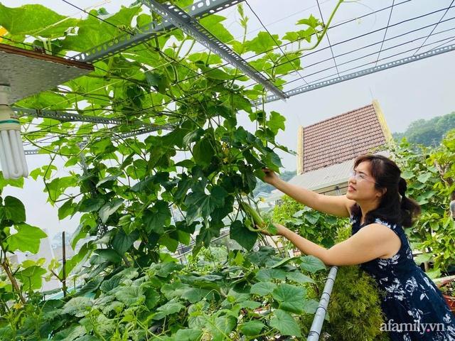 Khu vườn xanh tươi không khác gì nông trại trên sân thượng ở TP Thủ Đức, Sài Gòn - Ảnh 2.