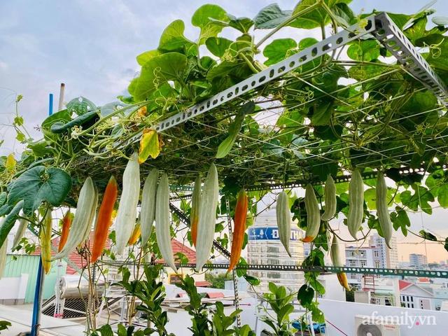 Khu vườn xanh tươi không khác gì nông trại trên sân thượng ở TP Thủ Đức, Sài Gòn - Ảnh 14.