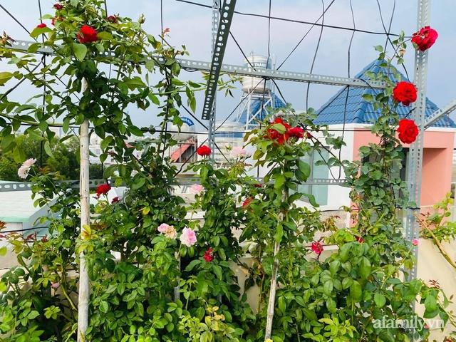 Khu vườn xanh tươi không khác gì nông trại trên sân thượng ở TP Thủ Đức, Sài Gòn - Ảnh 17.