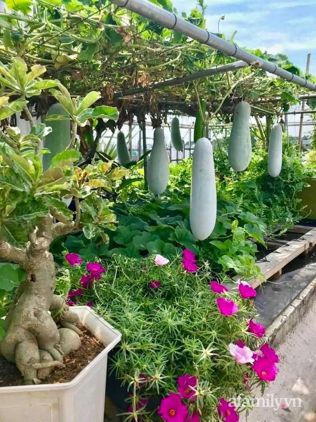 Khu vườn xanh tươi không khác gì nông trại trên sân thượng ở TP Thủ Đức, Sài Gòn - Ảnh 23.