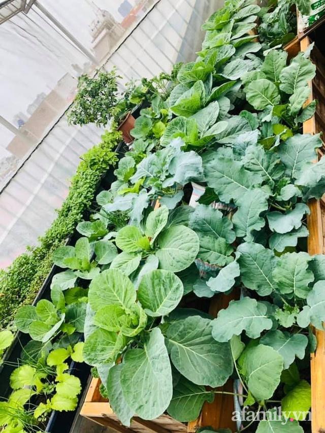 Siêu thị rau quả sạch không thiếu thứ gì trên sân thượng 70m² ở Hà Nội - Ảnh 17.