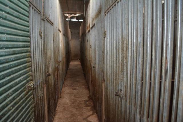 Vụ nuôi nhốt 17 con hổ trong nhà như nuôi heo: Chủ nhà xây tầng hầm rộng cả trăm mét để tránh bị phát hiện - Ảnh 2.