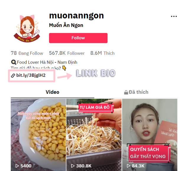 Xây dựng kênh tiktok với nửa triệu follow, cô gái Nam Định có thu nhập 60 triệu/tháng - Ảnh 6.