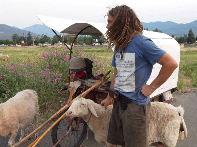 12 năm phiêu diêu tự tại của người đàn ông sống trong ngôi nhà di động là chiếc xe ba bánh cũ vỏn vẹn 2 mét vuông và nuôi 4 con cừu làm bạn đồng hành  - Ảnh 3.