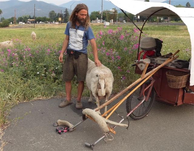 12 năm phiêu diêu tự tại của người đàn ông sống trong ngôi nhà di động là chiếc xe ba bánh cũ vỏn vẹn 2 mét vuông và nuôi 4 con cừu làm bạn đồng hành  - Ảnh 20.